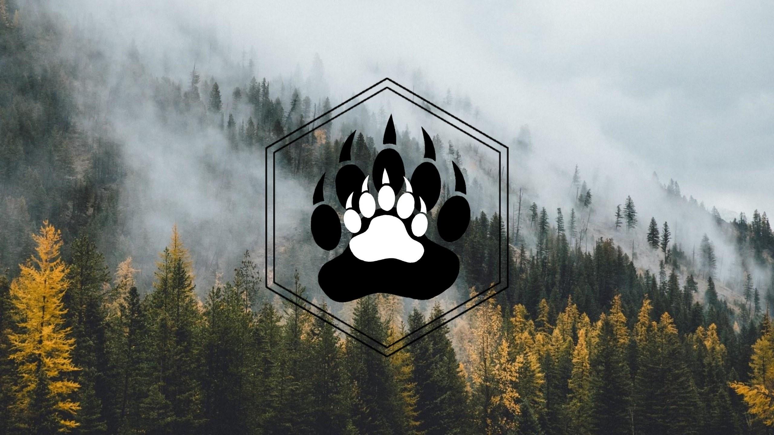 Woodshop Bear